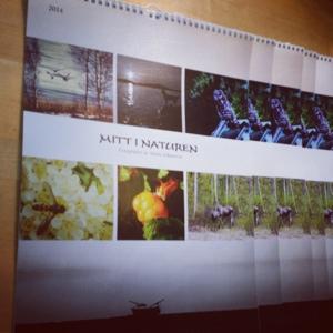 lapplandsfotografen kalender